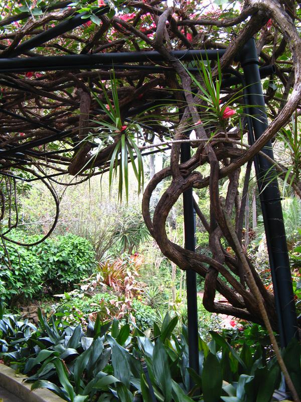 St Petersburg 39 S Sunken Gardens My Old Florida