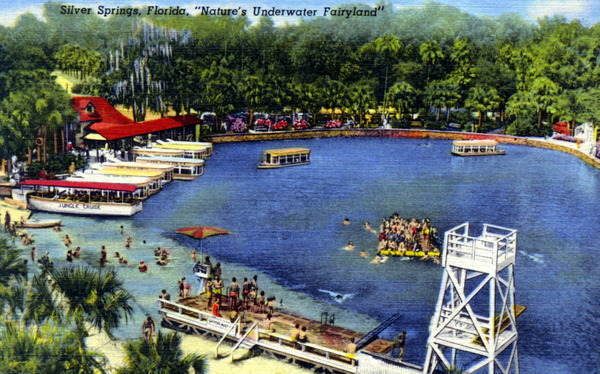 Silver Springs My Old Florida
